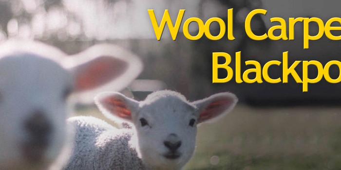 Wool-Carpets-Blackpool