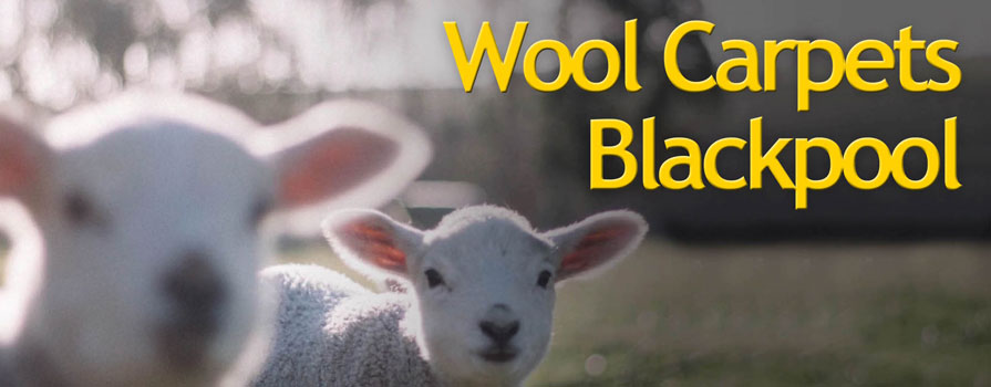 Quality Wool Carpets Blackpool